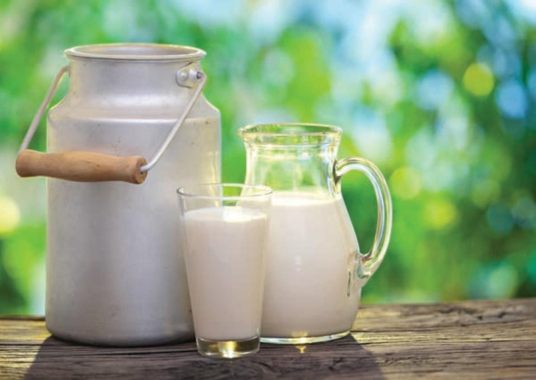 beneficios-e-maleficios-do-leite